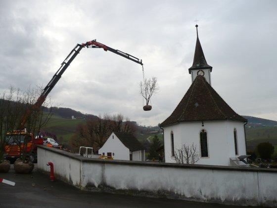 Begraafplaats-aridorf- 4