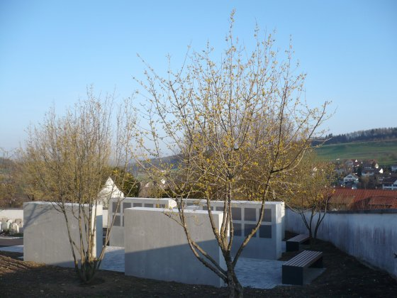 Begraafplaats-aridorf- 9