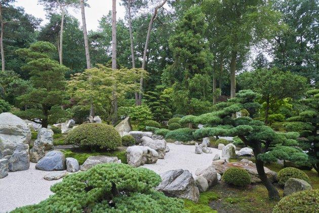 Japanse Tuin 10