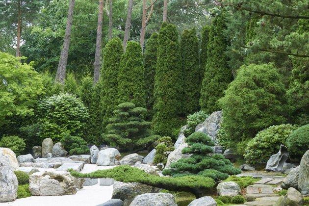 Japanse Tuin 14