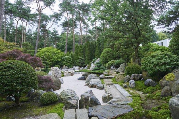 Japanse Tuin 2