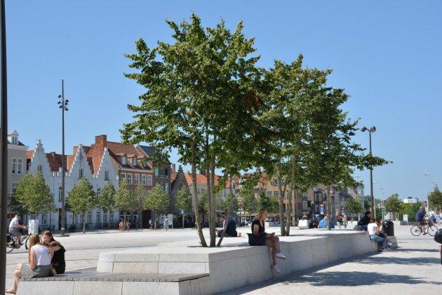 T Zand- Brugge 52